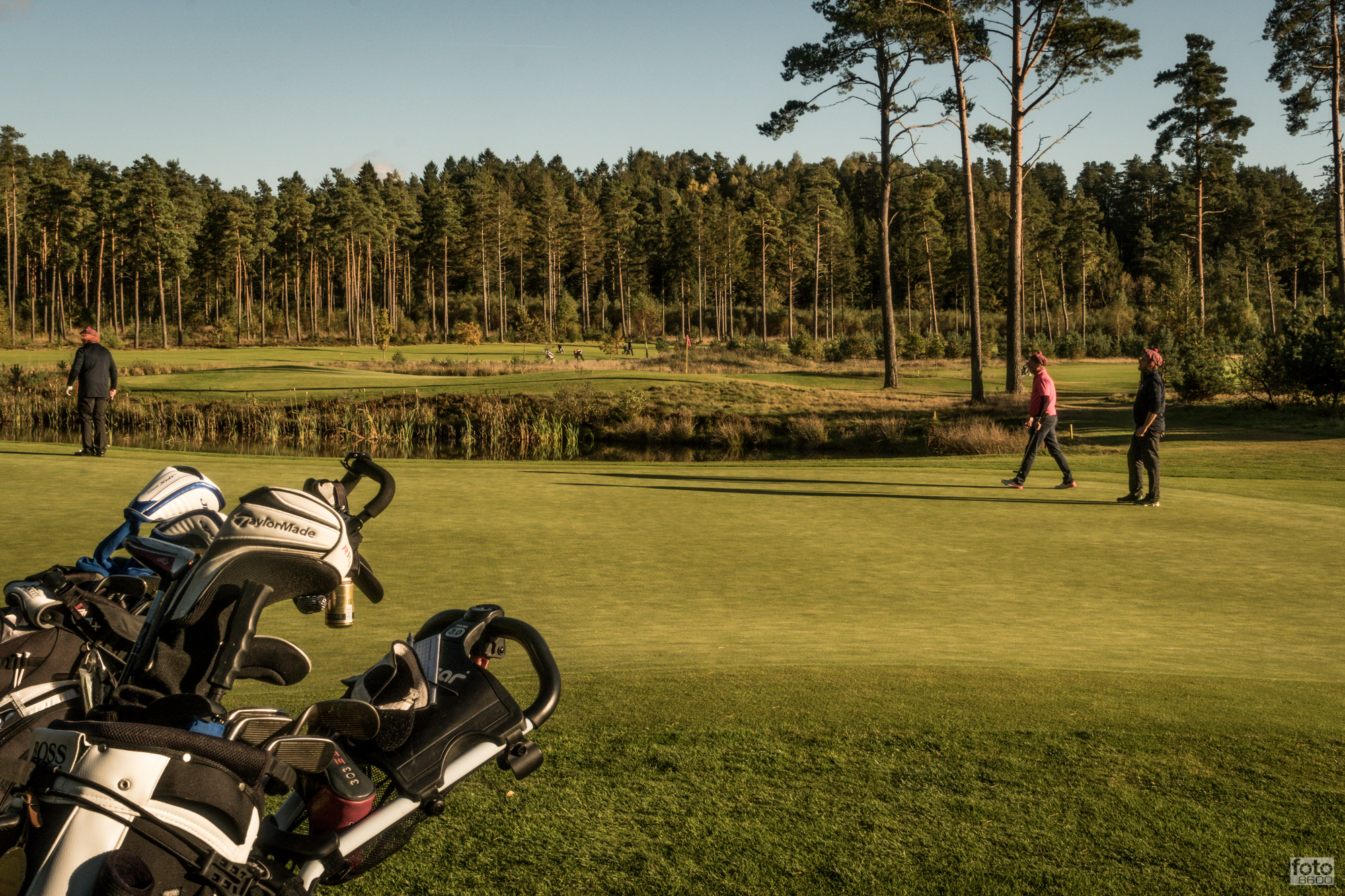 5758efe54888 Klubaktiviteter - Silkeborg Ry Golfklub